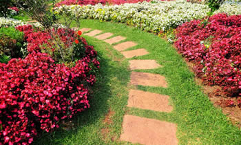 Landscaping in Memphis STATE% Landscaping Services in  Memphis STATE% Landscapers in  Memphis STATE%